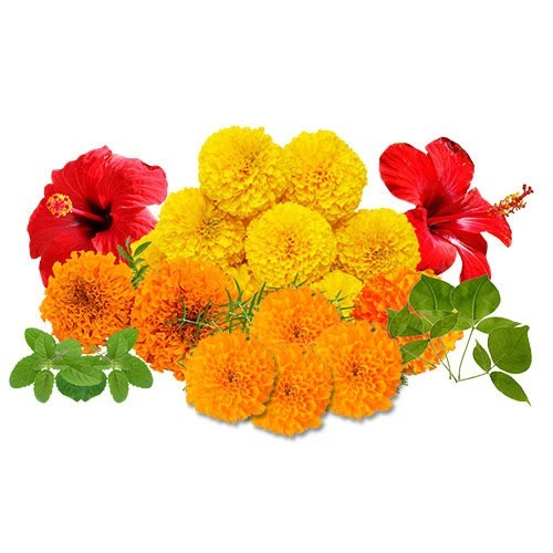 Fresh Mixed Loose Flowers